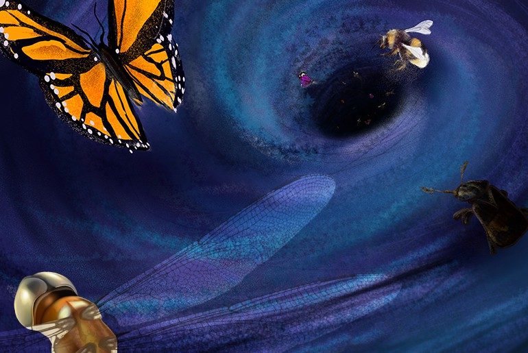Illustration depicting endangered insect species hurtling into an abyss of extinction