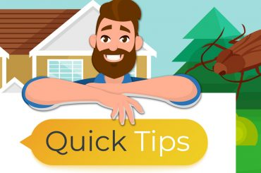 """Header Illustration: Man holding a sign that says """"Quick Tips."""" Cockroach in the background."""