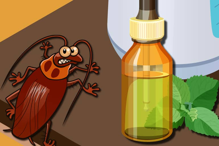 Cartoon illustration of a cockroach being frightened away by a bottle of essential oil