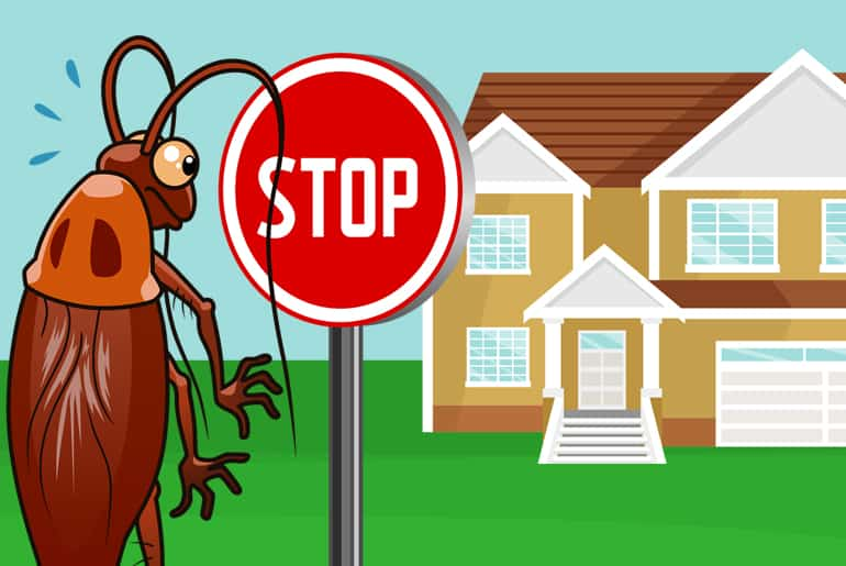 Cartoon illustration of a cockroach being stopped by a stop sign before entering a house.